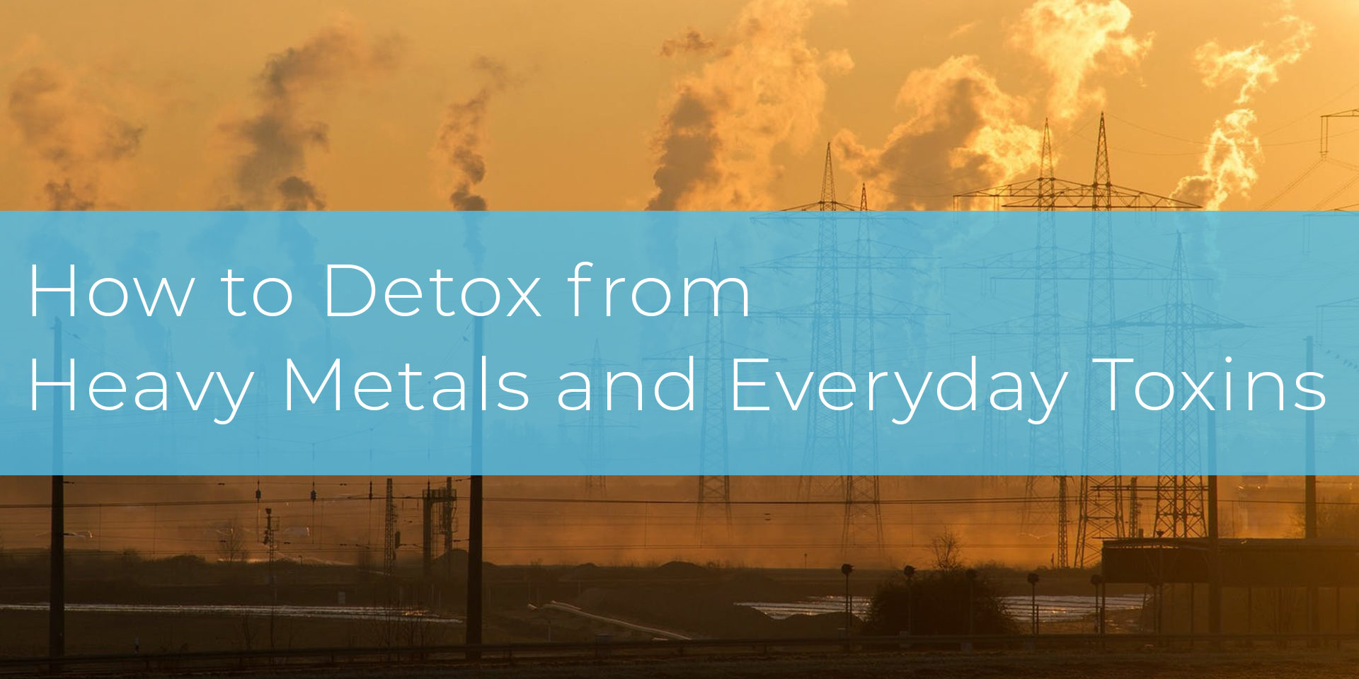 How to Detox from Heavy Metals and Everyday Toxins – Jason